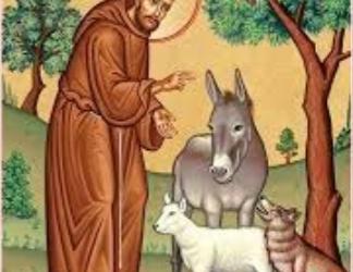 Catholic Services & Notices